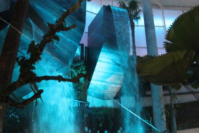 El Orquidario se convierte en uno de los destinos preferidos por los turistas
