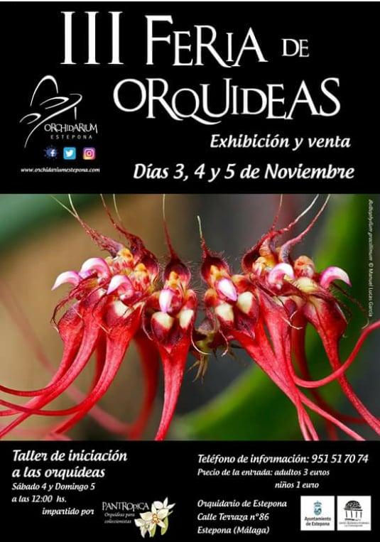 La tercera feria de Orquídeas del 3 al 5 de noviembre