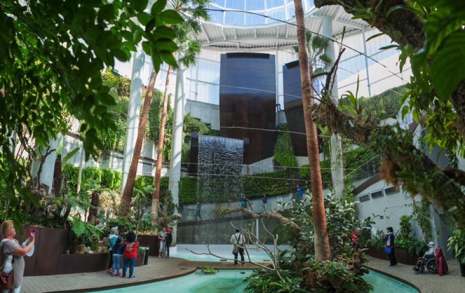El Ayuntamiento modernizará el Orquidario con una sala de exhibición y una aplicación móvil sobre las especies