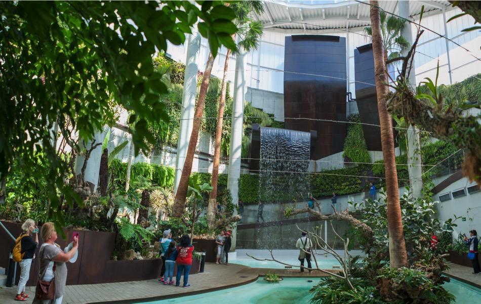 El Parque Botánico-Orquidario de Estepona será la primera sede española del Consejo Europeo de la Orquídea