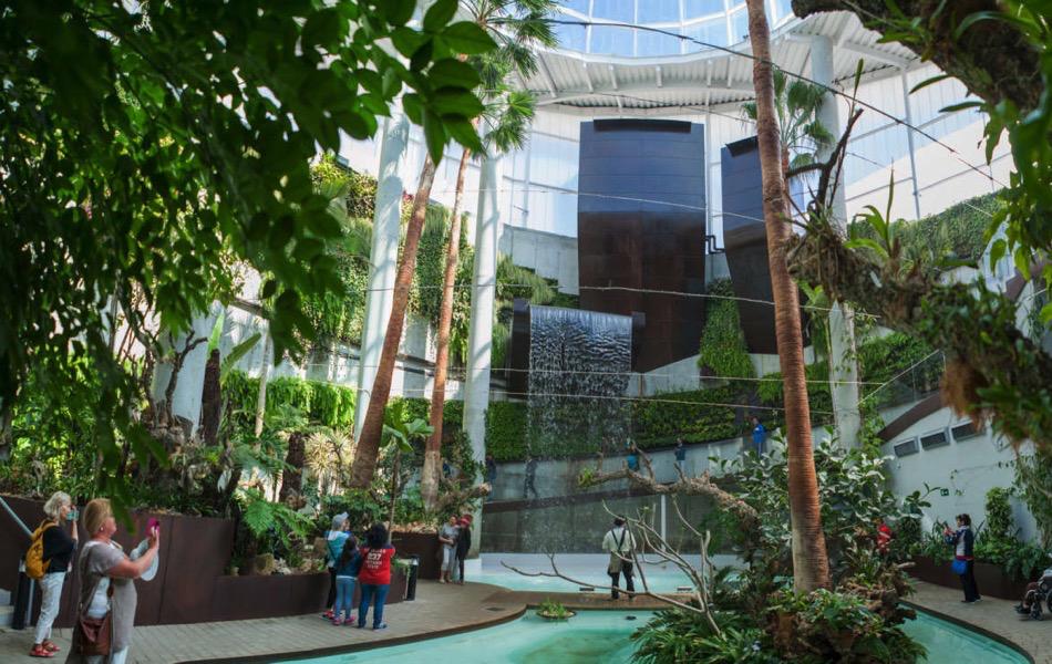 El Parque Botánico-Orquidario  alberga la floración de más de 200 especies diferentes