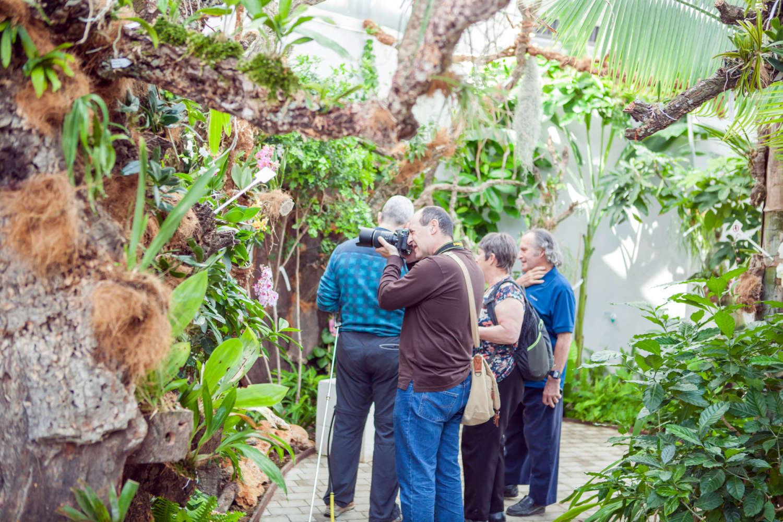 El Orquidario de Estepona supera las 40.000 visitas en 2019, con un incremento interanual del 10%